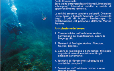 Corso teorico-pratico di Biologia Marina 2013