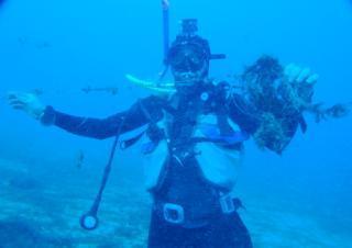 Marina Grande, parte la pulizia dei fondali