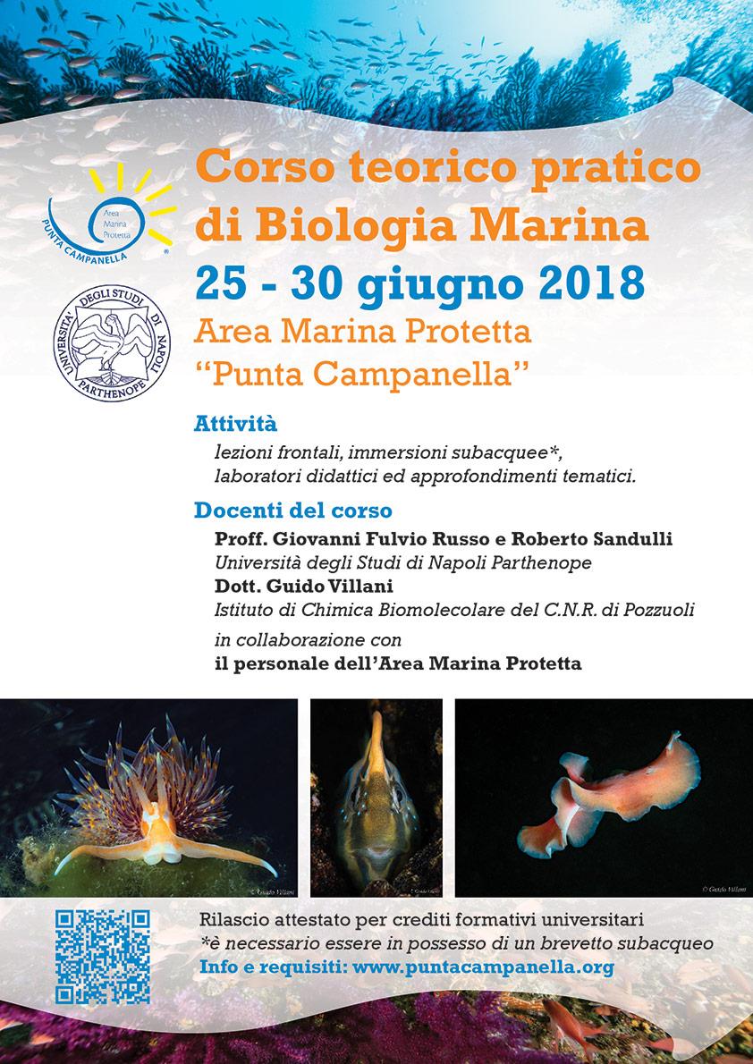 Corso teorico-pratico di Biologia Marina 2018 - Locandina