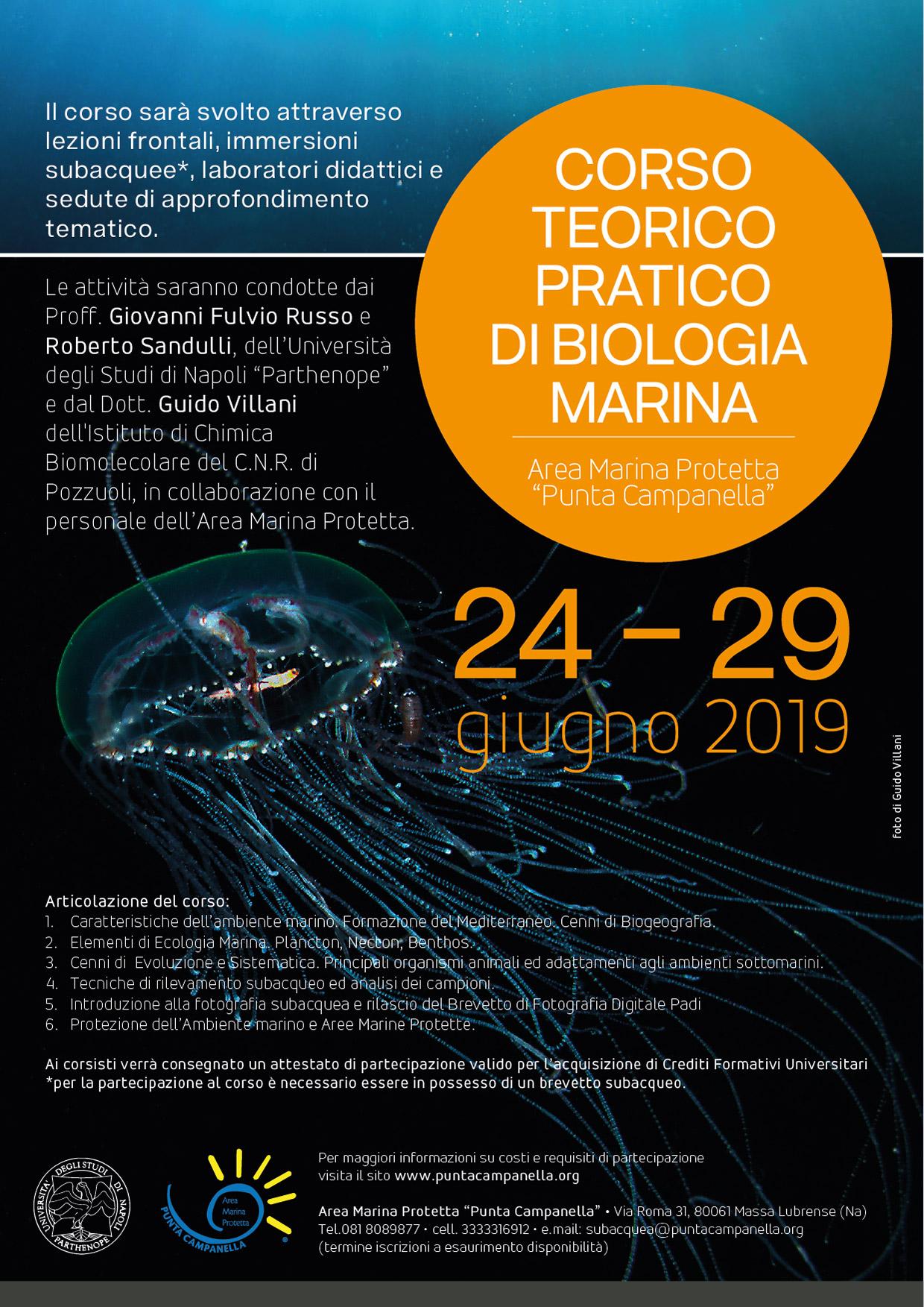 Corso teorico-pratico di Biologia Marina 2019 - Locandina