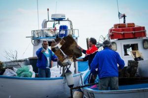 one Ischia Clean blitz per la tutela dei fondali marini