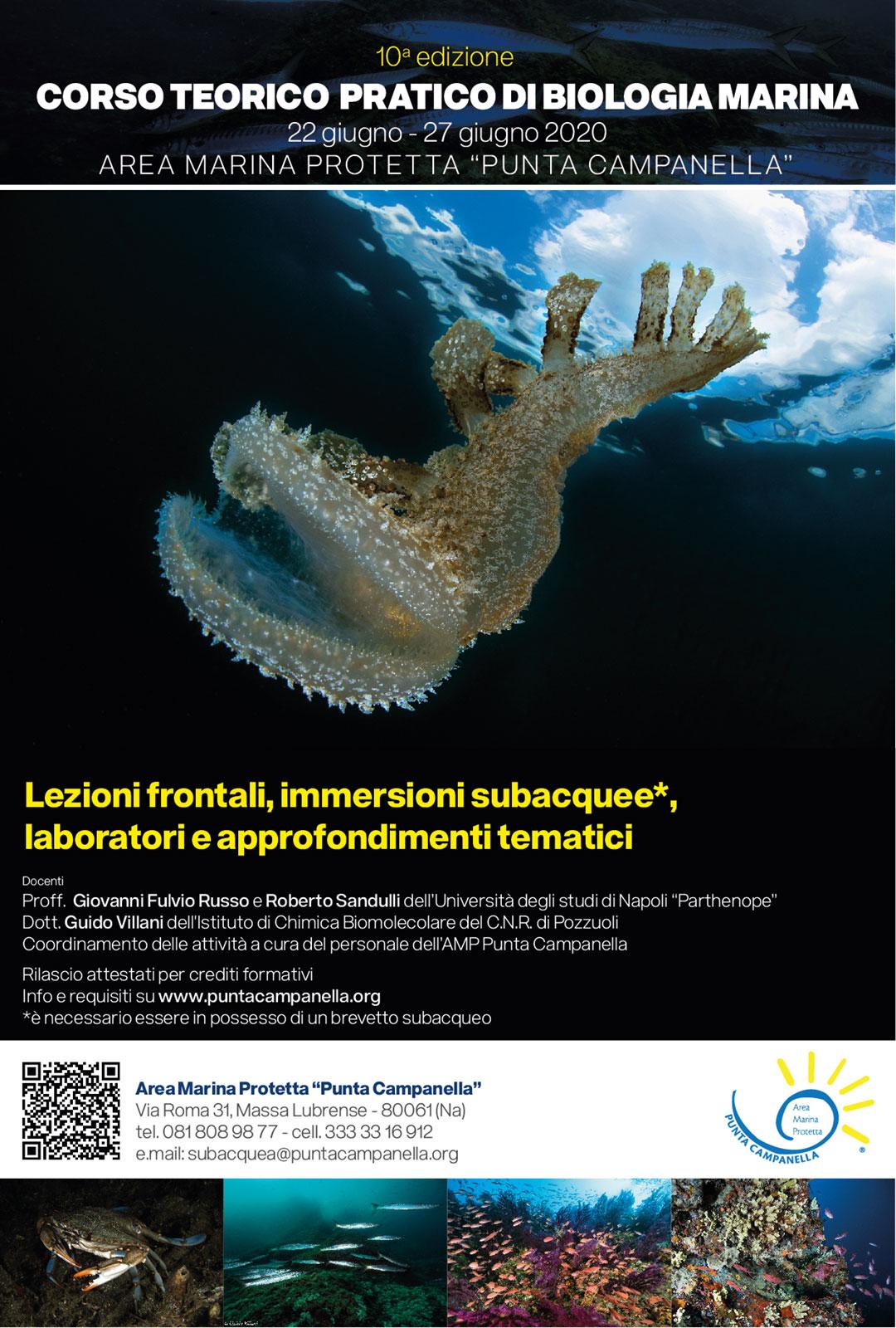 Corso teorico-pratico di Biologia Marina 2020 - Locandina